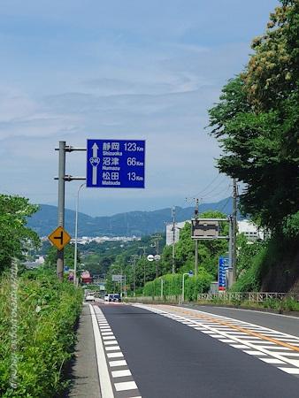 IMGP4427.jpg